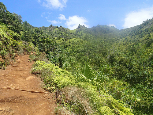 Na Pali Heights